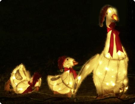 Ganzs_weihnachtlich_2010